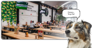 Restaurantes pet friendly 4