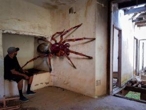 Los insectos gigantes de Odeith
